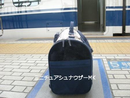 新幹線に乗ります